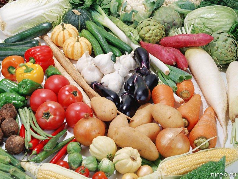 Уборка картофеля в регионах завершена, приостановлен сбор овощей: моркови, столовой свеклы, капусты