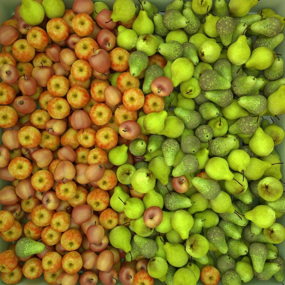Франция после отмены 10-летнего эмбарго возобновляет поставки яблок и груш в США