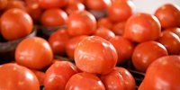 Poland: further decrease in tomatoes prices