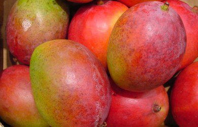 Moscow: rising prices for Brazilian mangoes