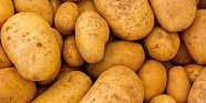 What is the situation on the wholesale potato market in south-eastern Poland?