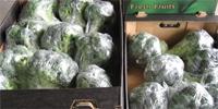 Rosną ceny brokułów